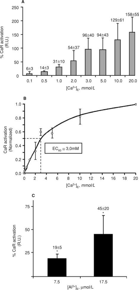 Aluminum posttranscriptional regulation of parathyroid hormone 1afigure ccuart Gallery